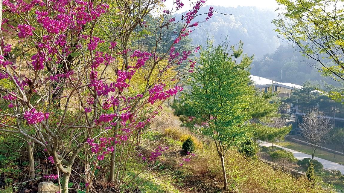 봄10(수정)14번.jpg